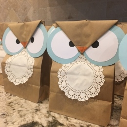 Owl-themed favor bags filled with candy.